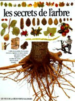 Burnie David - Les Secrets de l`arbre.